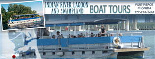 florida boat tour website design